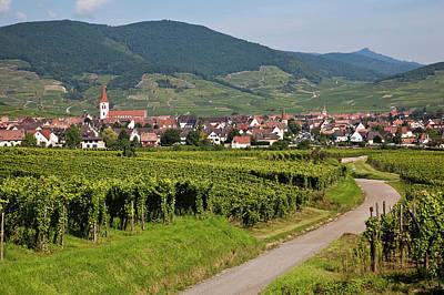 Alsace, France. Art Print by Buena Vista Images