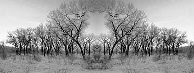 Photograph - Altered Series - Bare Double by Kathleen Grace
