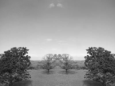 Photograph - Altered Series - Two In A Landscape by Kathleen Grace