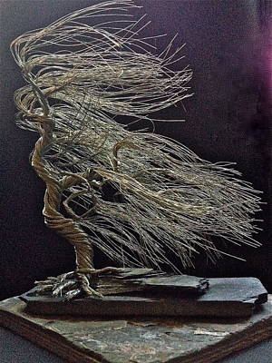 Windblown Mixed Media - Aluminum Windblown Number 14 by Aleksandr Rakhlin