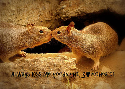 Photograph - Always Kiss Me Goodnight by Cindy Wright