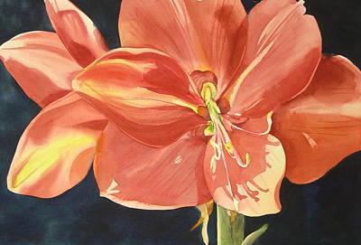 Amaryllis Watercolor Painting - Amaryllis by Marlene Gremillion