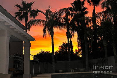 Photograph - Amazing Sunset by Pamela Walrath