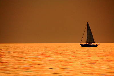 Photograph - Amber Sail by Coby Cooper