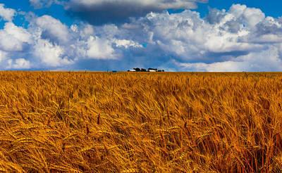 Amber Waves Of Grain Art Print by Doug Long