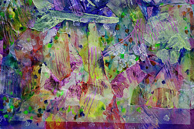 Designers Choice Mixed Media - Ambrosia Collage  by Don Wright