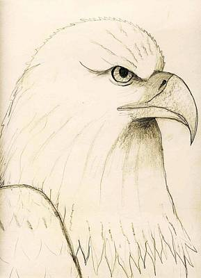 Strong America Drawing - American by Charles  Jennison