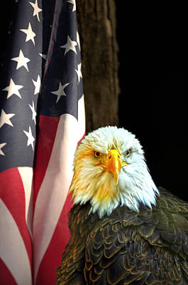 Art Print featuring the photograph American Eagle And American Flag by Randall Branham
