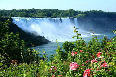 Photograph - American Falls by Frank Townsley