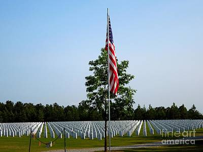 Photograph - American Flag At Soldiers Graves by Renee Trenholm