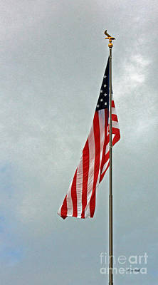Photograph - American Freedom by Terri Mills