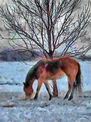 Equine Drawing - American Paint In Winter by Jeff Kolker