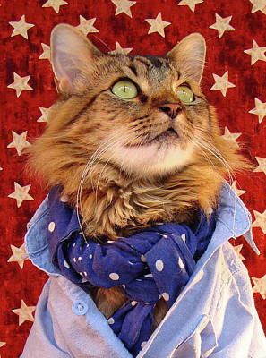 Americana Cat Art Print by Joann Biondi