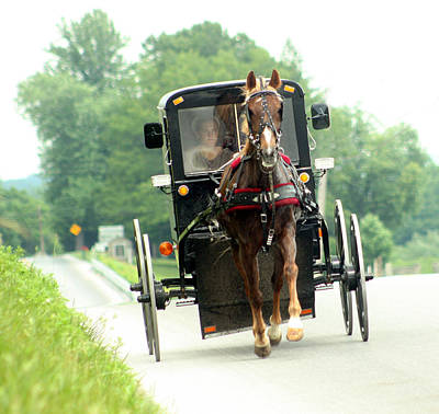 Amish Buggy On The Road Art Print by Emanuel Tanjala