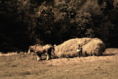 Country Side Photograph - Amish Hay Wagon by Tom Mc Nemar