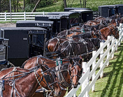 Horse And Carriage Photograph - Amish Parking Lot by Tom Mc Nemar
