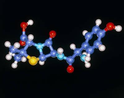 Amoxycillin Drug Molecule Print by Laguna Design