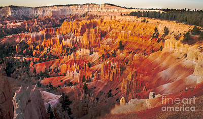 Photograph - Amphitheater At Bryce Canyon by Robert Bales