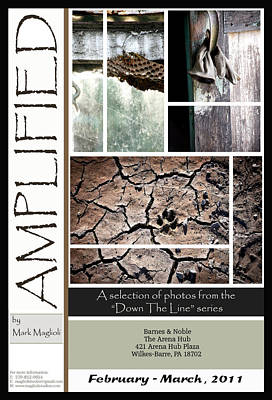 Amplified Poster Art Print by Maglioli Studios