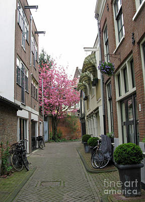 Photograph - Amsterdam In Spring 03 by Ausra Huntington nee Paulauskaite