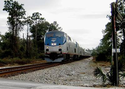 Amtrak Silver Meteor At Lake Woodruff Florida Art Print