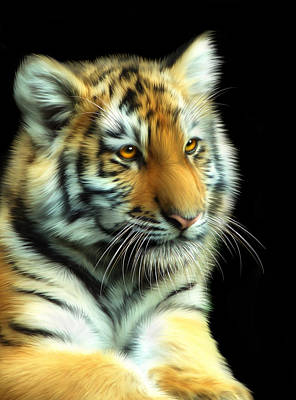 Tigris Digital Art - Amur Tiger Cub by Julie L Hoddinott