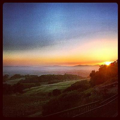 Wine Wall Art - Photograph - An Amazing #sonomacounty #sunset At by Shana Ray