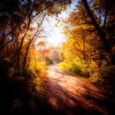 Photograph - An Autumn Invitation by Anthony Rego