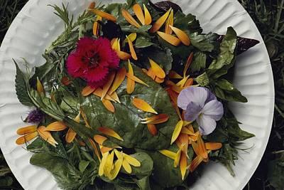An Edible Salad At The Tilth Harvest Art Print by Sam Abell
