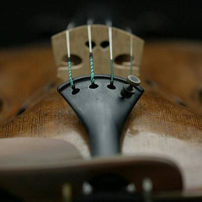 Music Photograph - An Expensive #strad Violin by Manan Din