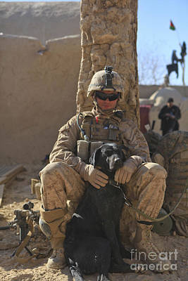 Afghanistan Photograph - An Ied Detection Dog Keeps His Dog by Stocktrek Images