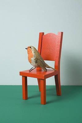 An Imitation Bird Sitting On A Miniature Chair Art Print by Charles Orr