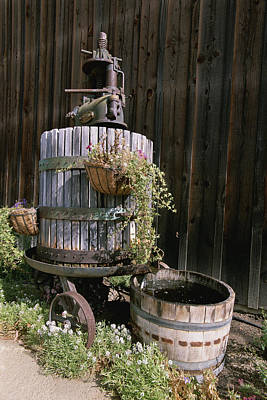 Pressed Flowers Photograph - An Oak Barrel And Grape Press Fountain by Rich Reid