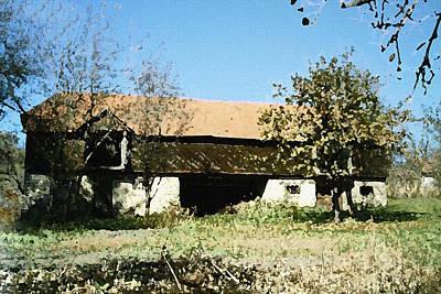 Photograph - An Old Barn by Bogdan M Nicolae