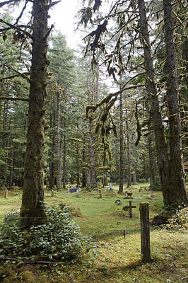 Queen Charlotte Islands Photograph - An Old Cemetary In A Forest by Taylor S. Kennedy