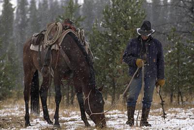 An Outfitter Lets His Horse Graze Art Print