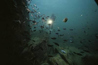 An Underwater Divers Light Sends Art Print by Bill Curtsinger