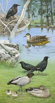 Painting - Anbg Brochure - Ponds And Lawn by Frances McMahon