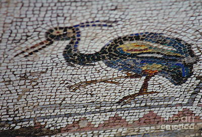 Photograph - Ancient Bird Mosaic by Barbara Plattenburg