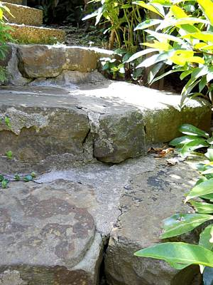 Photograph - Ancient Steps by Lynnette Johns