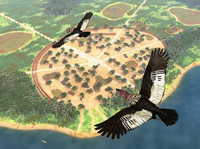 Condor Wall Art - Photograph - Andean Condors, Artwork by Walter Myers