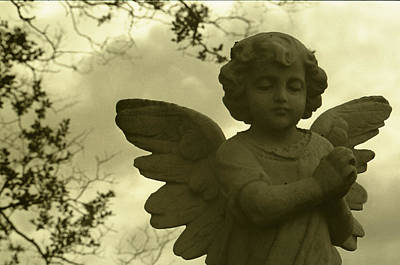 Toy Shop Photograph - Angel 1 by Doug Duffey
