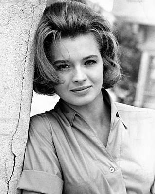 Publicity Shot Photograph - Angie Dickinson, 1963 by Everett