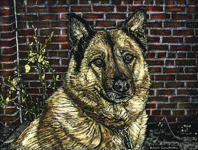 Angie The Dog Art Print by Robert Goudreau