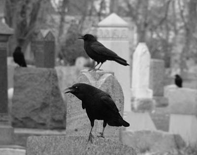 Ravens In Graveyard Photograph - Angry Crow by Gothicrow Images
