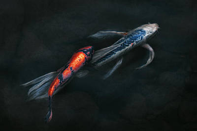 Genus Photograph - Animal - Fish - Beauty And Grace  by Mike Savad