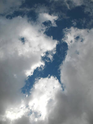 Photograph - Animals In The Sky by Connie Fox