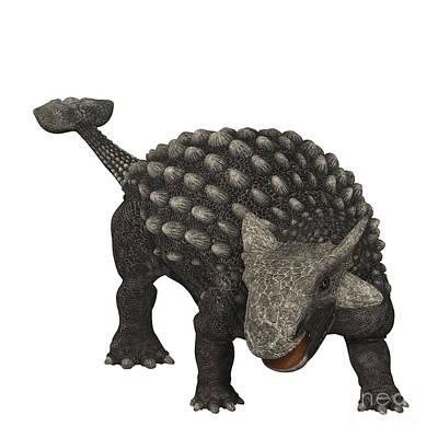 Ankylosaurus Was An Armored Dinosaur Print by Corey Ford