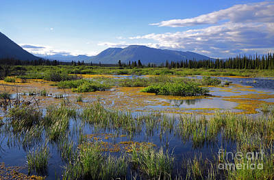 Annie Lake In Yukon Art Print by Charline Xia