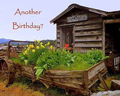 Photograph - Another Birthday Antiques by Cindy Wright